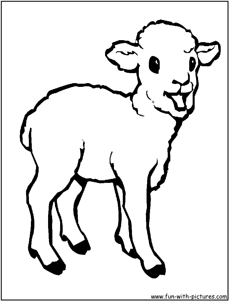 baby farm animal coloring pages