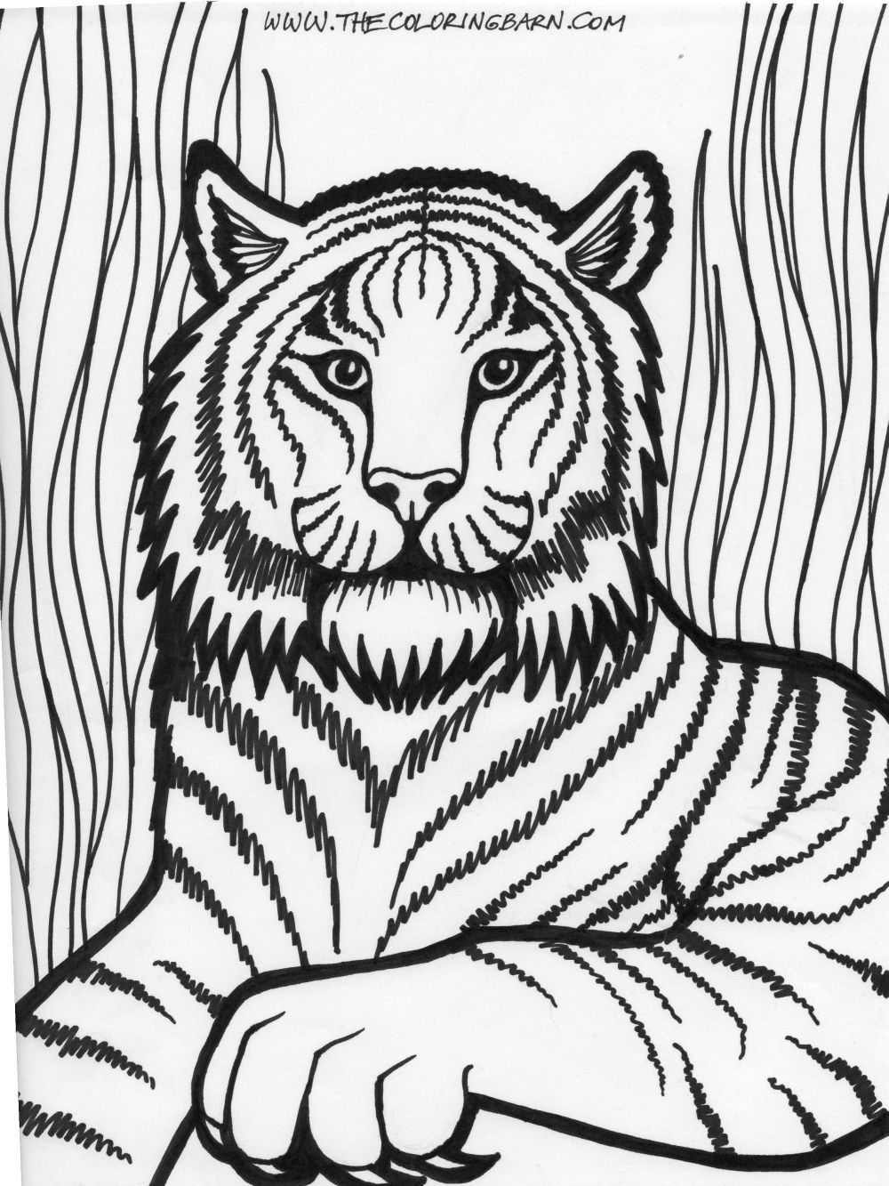 free coloring pages of lions - photo#24