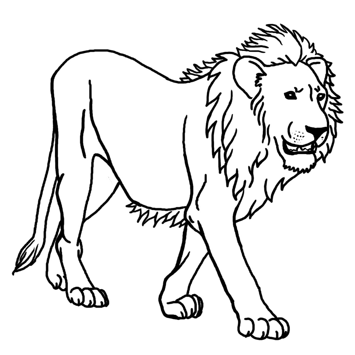 Lion Coloring Pages Only Coloring Pages
