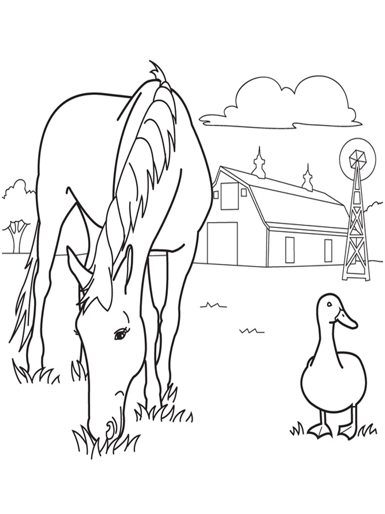 Spirit Animals Coloring Book Realistic Farm Animal Pages