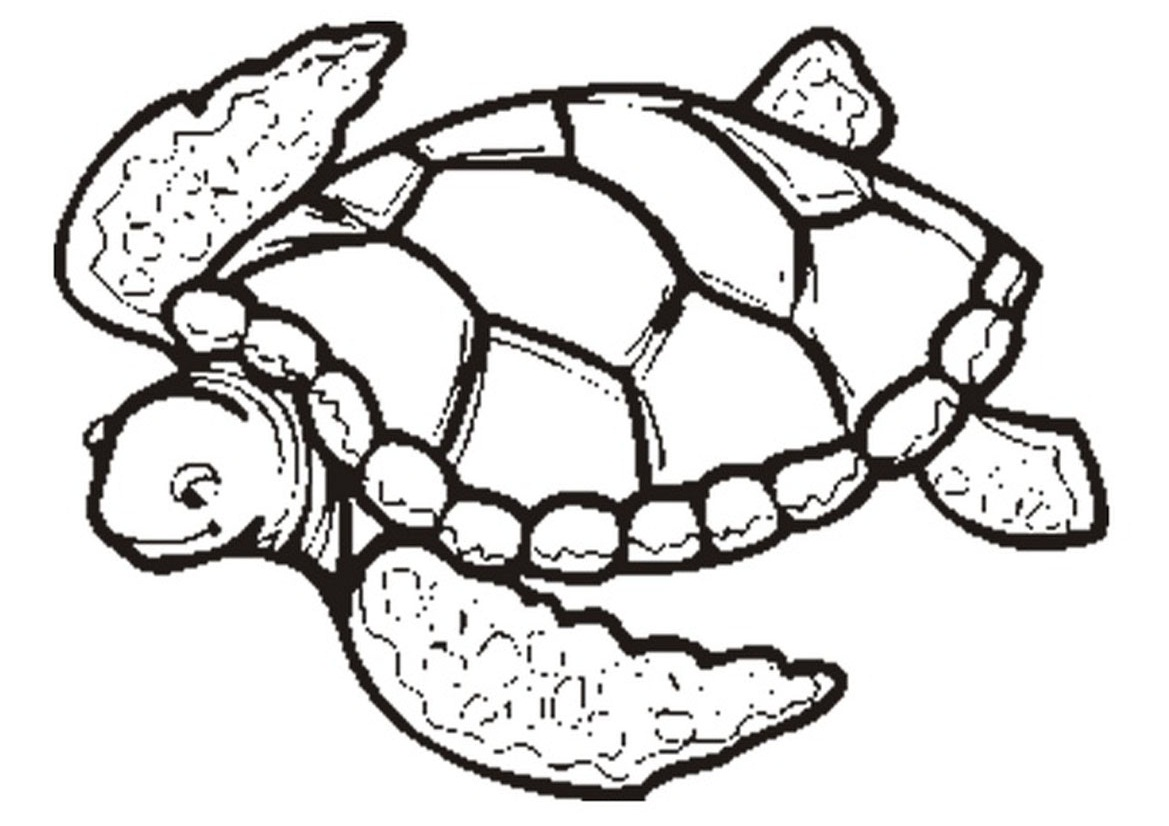 shapes turtle coloring pages - photo#42