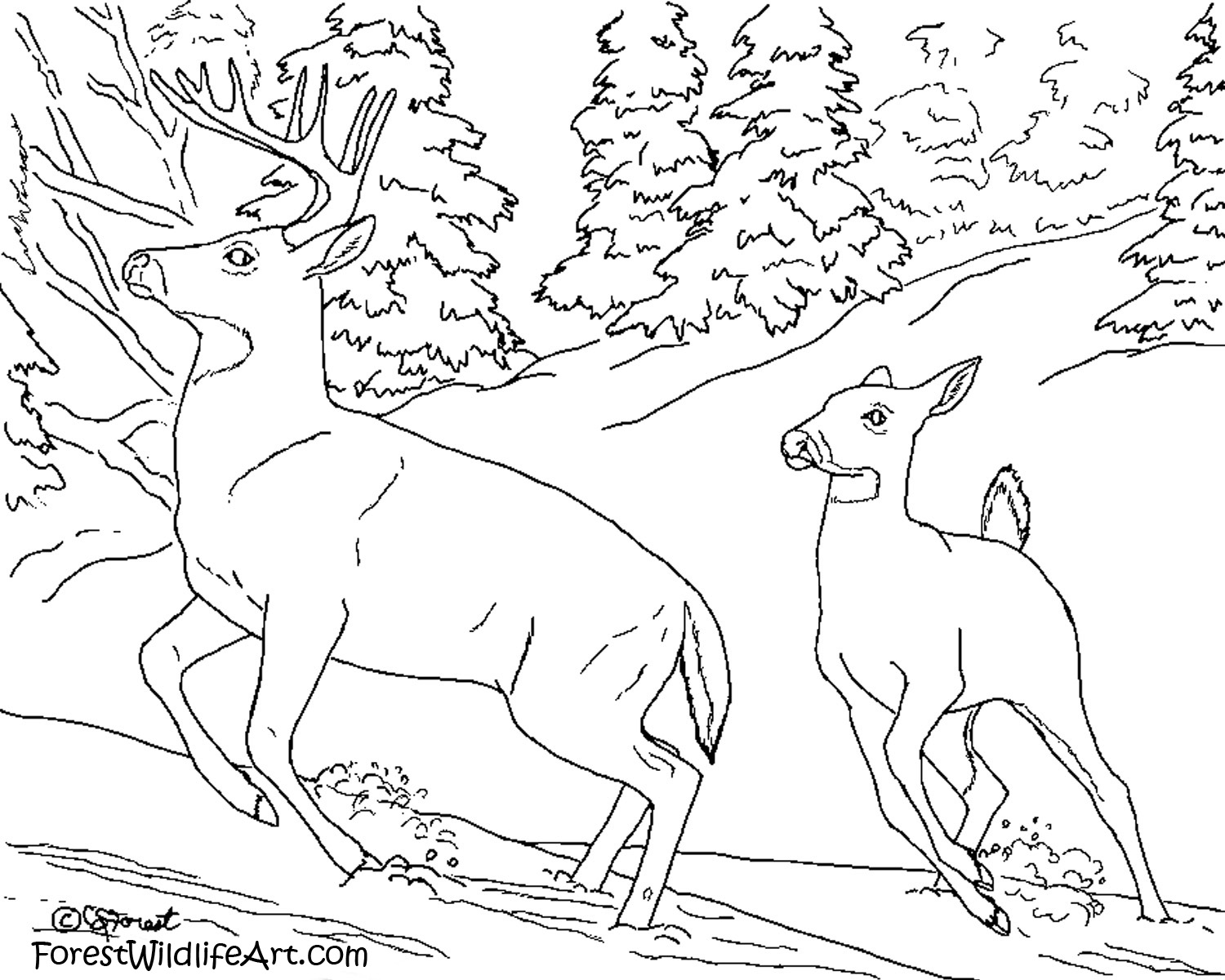 coloring pages for teenagers difficult 28 images coloring
