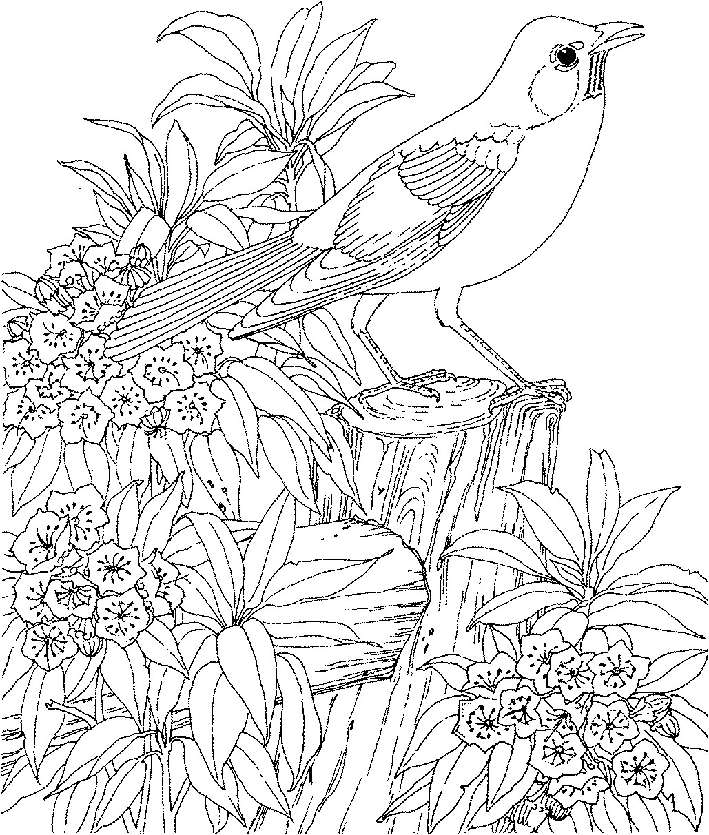 coloring pages for teenagers difficult mermaid only coloring pages