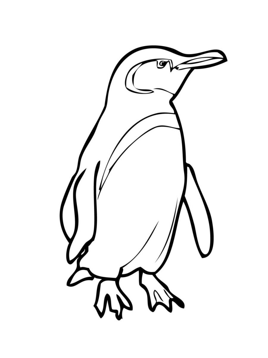 penguin coloring page | Only Coloring Pages
