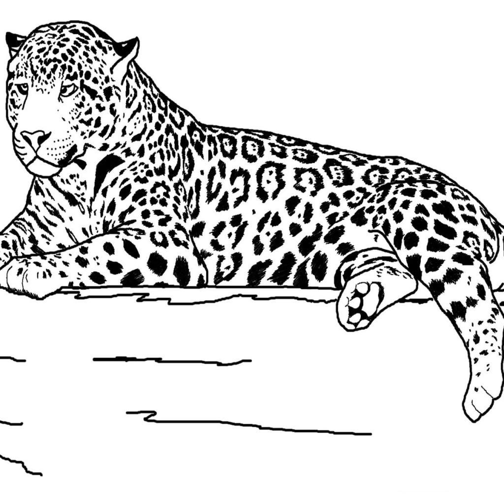 realistic free animal coloring pages - photo#12