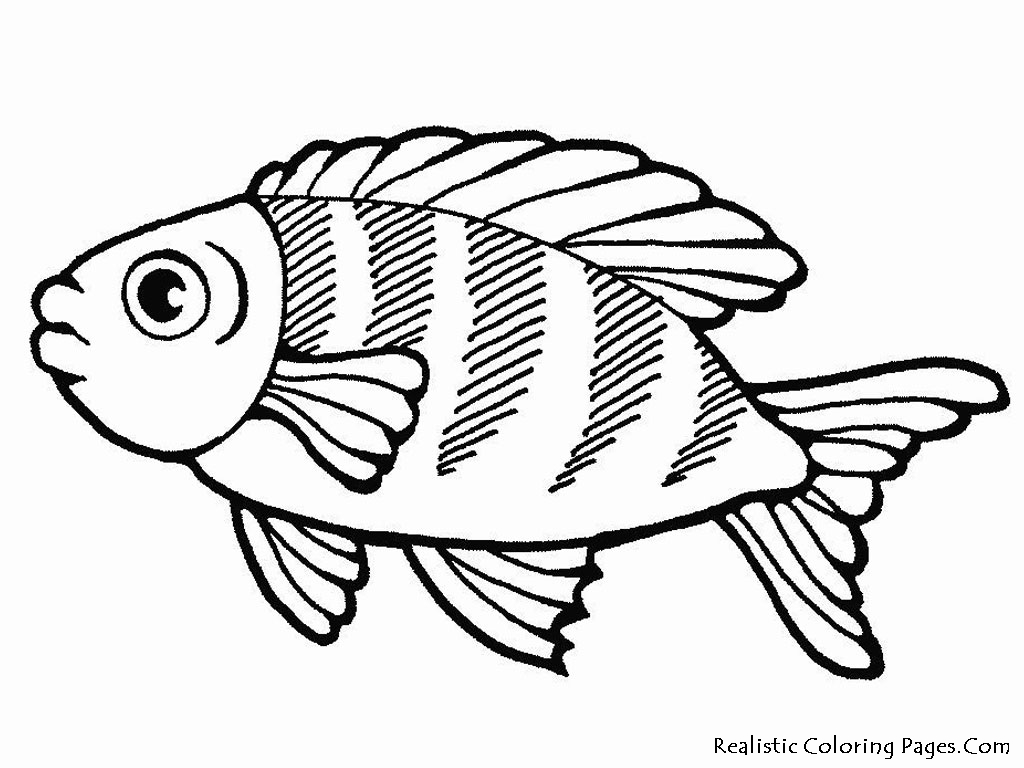 sea life coloring pages Only
