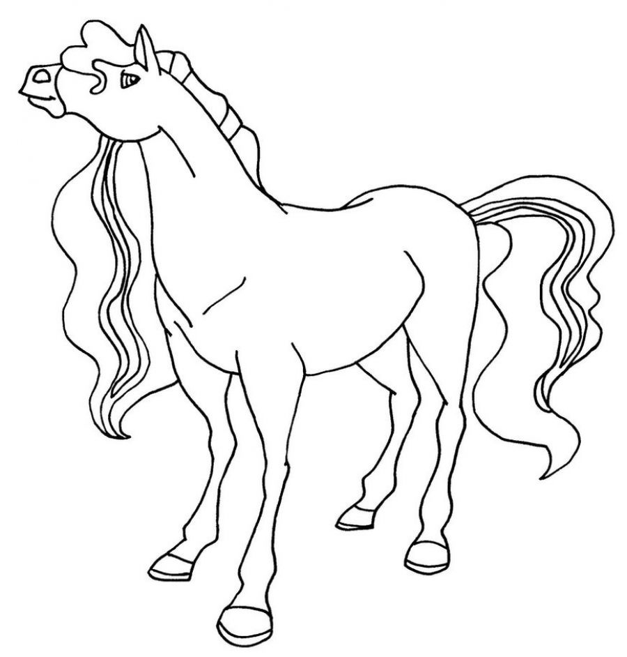 Free Coloring Pages Of Horse