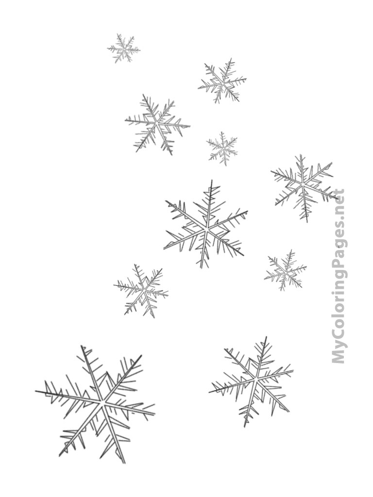 Snowflake Coloring Pages Pdf : Free coloring pages of how many snowflakes