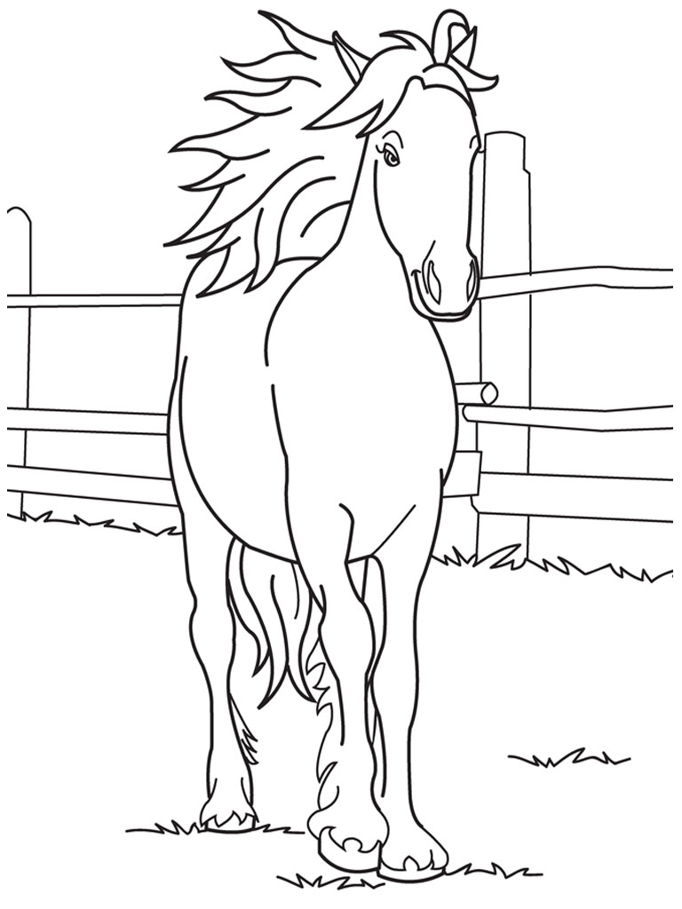 Cute Baby Horse Coloring Pages 01