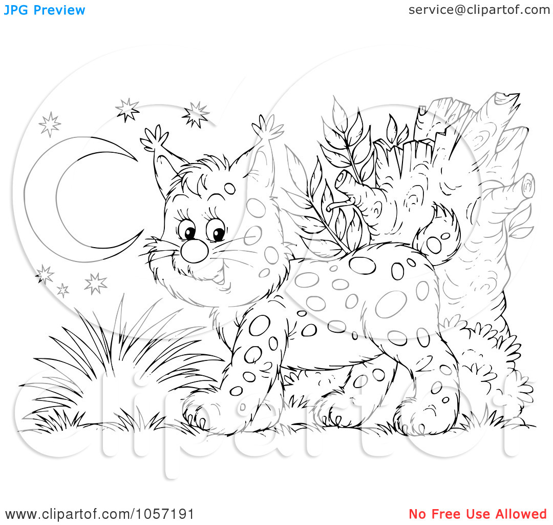 lynx coloring pages 09