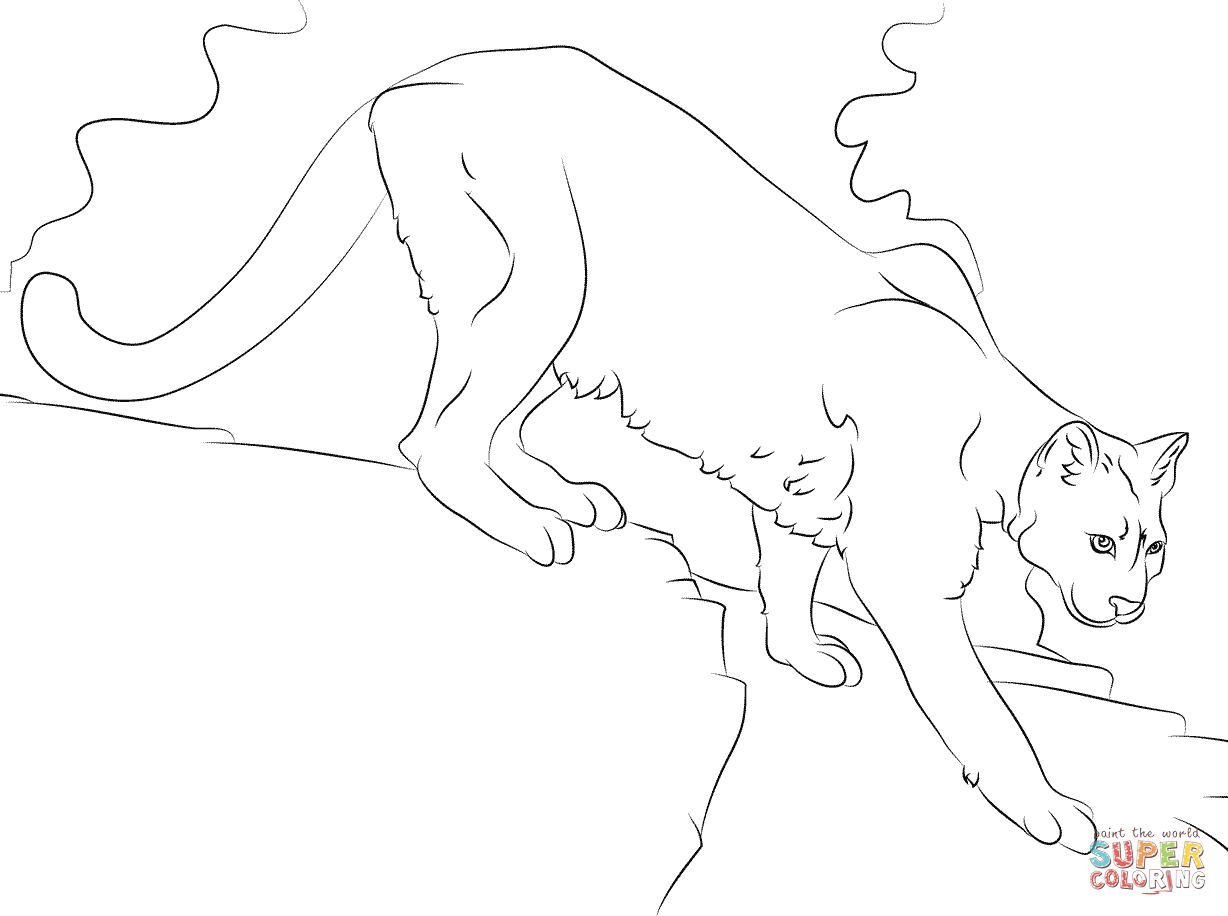 Mountain lion coloring pages getcoloringpagescom sketch for Realistic lion coloring pages