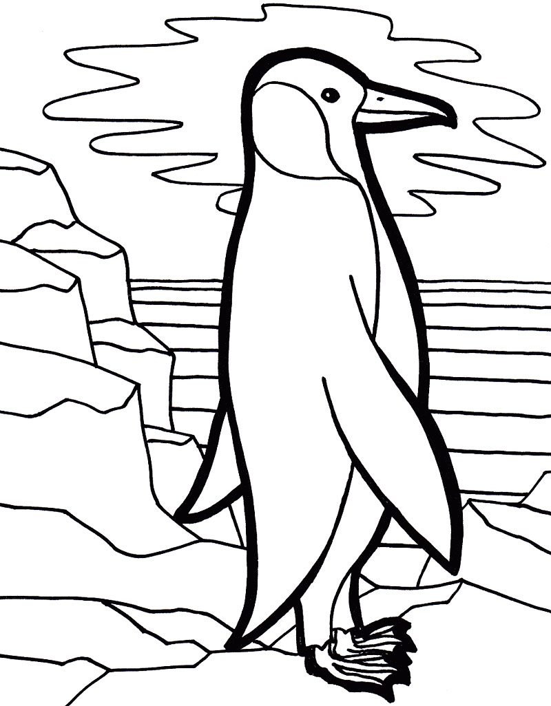 Free penguin coloring page only coloring pages for Free coloring pages of penguins