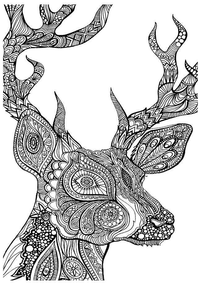 adult coloring pages deer 01