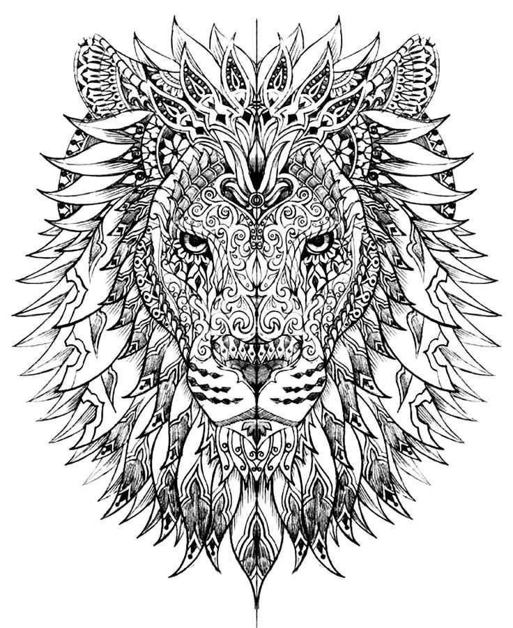 Lion Head Adult Coloring Pages 01