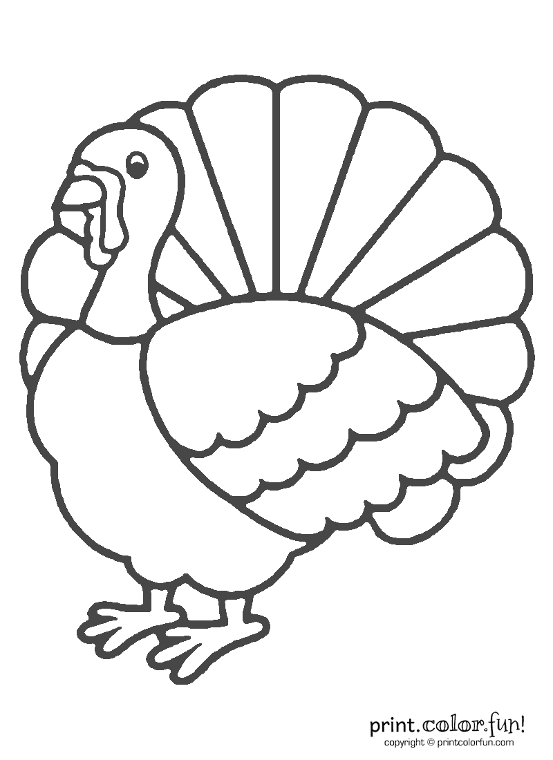 Turkey Coloring Pages 05