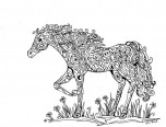 Zentangle horse Coloring pages abstract
