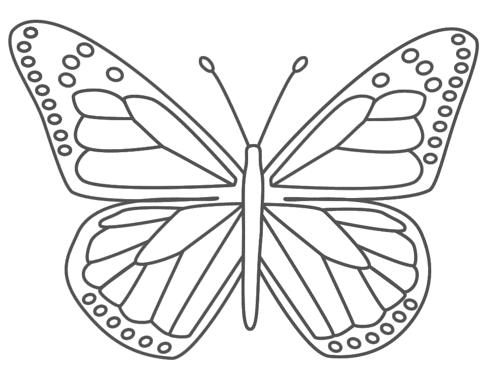 Coloring Pages Butterfly 01