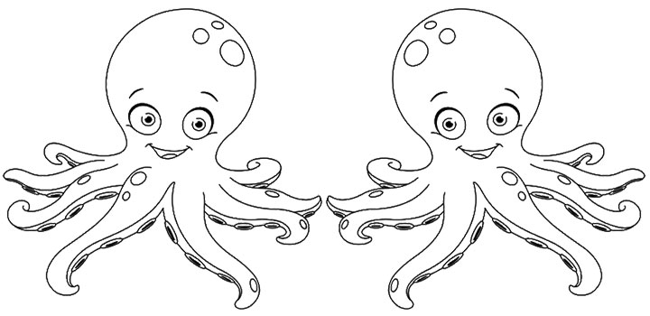 Coloring Pages Common Octopus