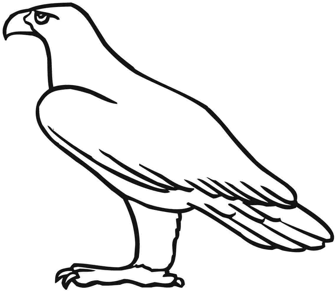 eagle coloring pages preschool