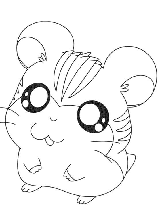 hamster coloring pages Only Coloring
