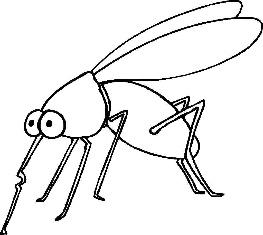 mosquito coloring page 01