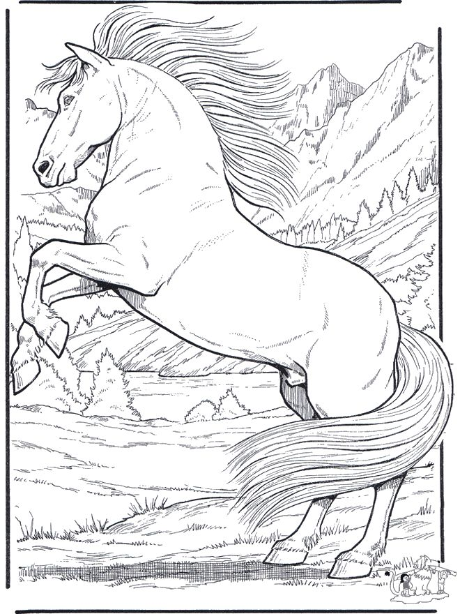 realistic animal coloring pages 01