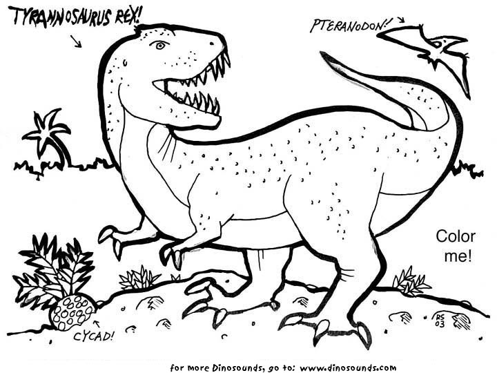 trex coloring