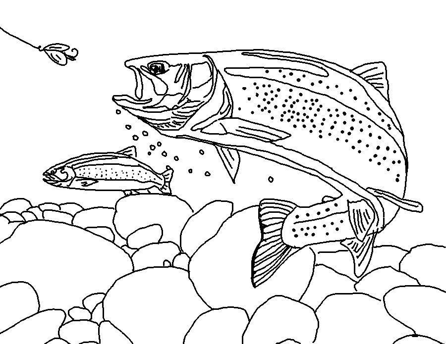 Trout Coloring Book 01