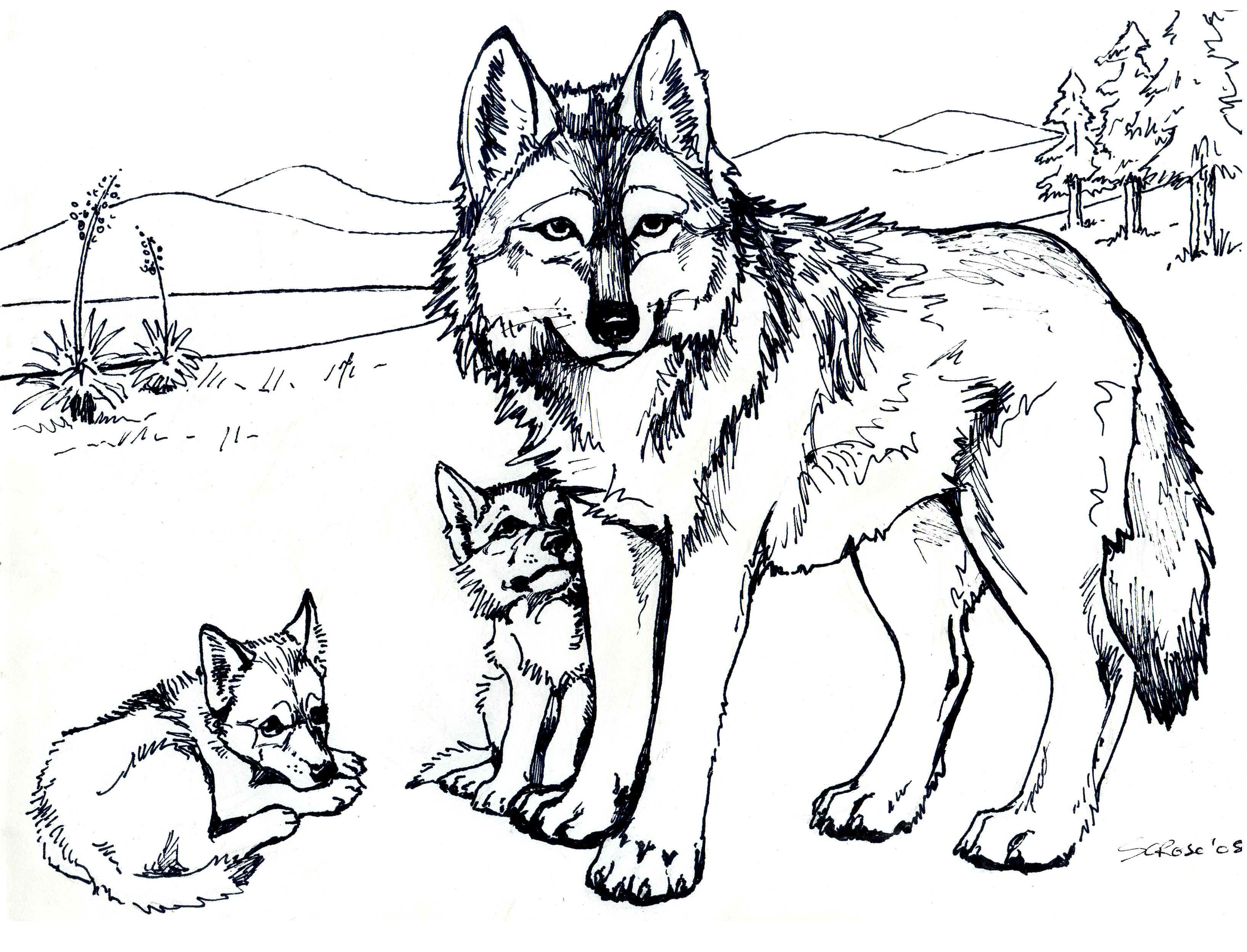 Wolf Coloring Pages 01