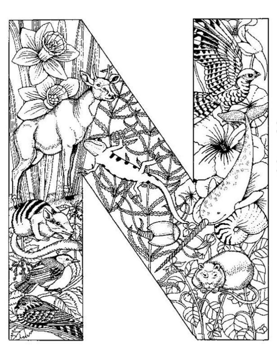Free Coloring Pages Of Detailed Letters