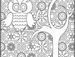 difficult owl coloring page for adults