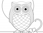 owl coloring pictures for free