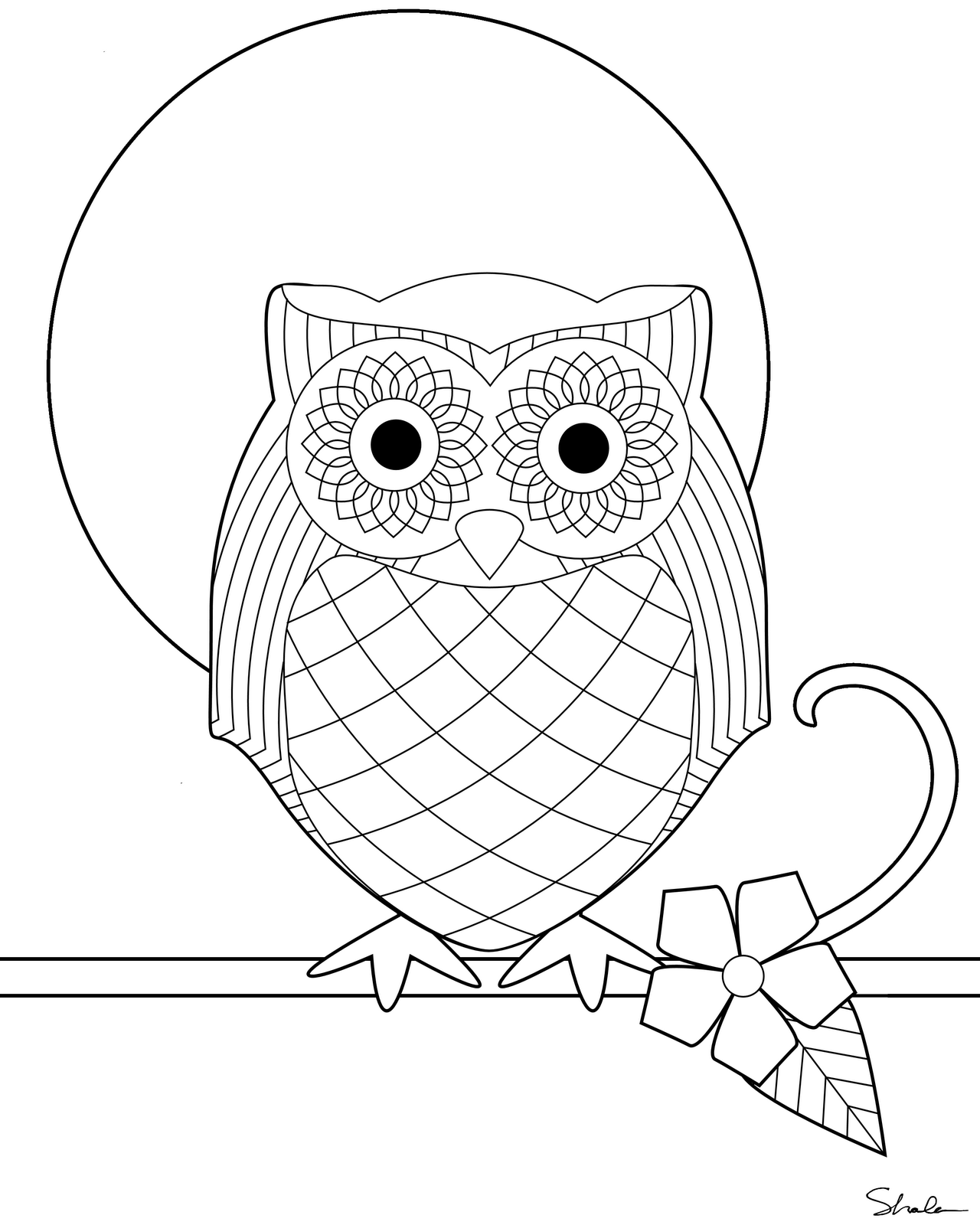 Owl Coloring Pictures For Free 01