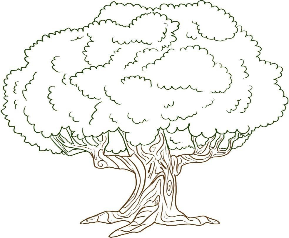 tree coloring pages free 01