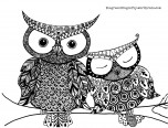 two owl coloring page for kids