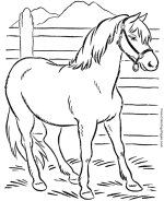 horse coloring page 03