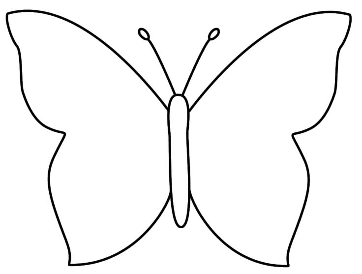 Butterfly Outline Coloring Pages 1