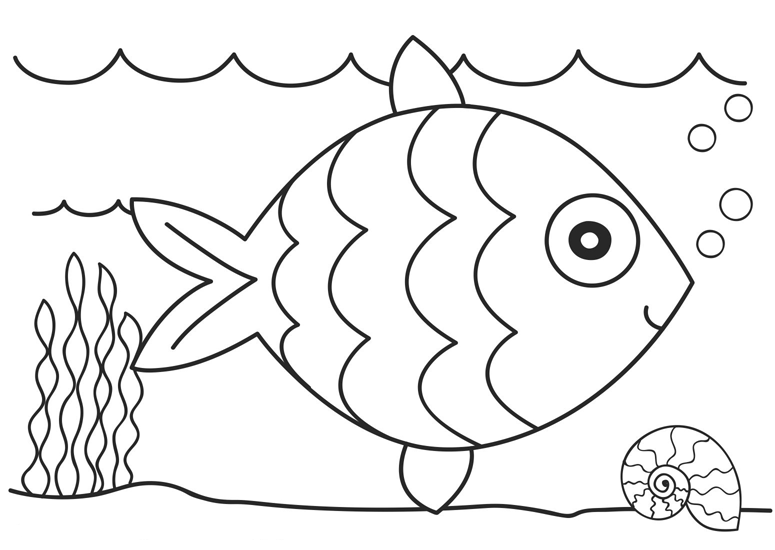 fish coloring page 05
