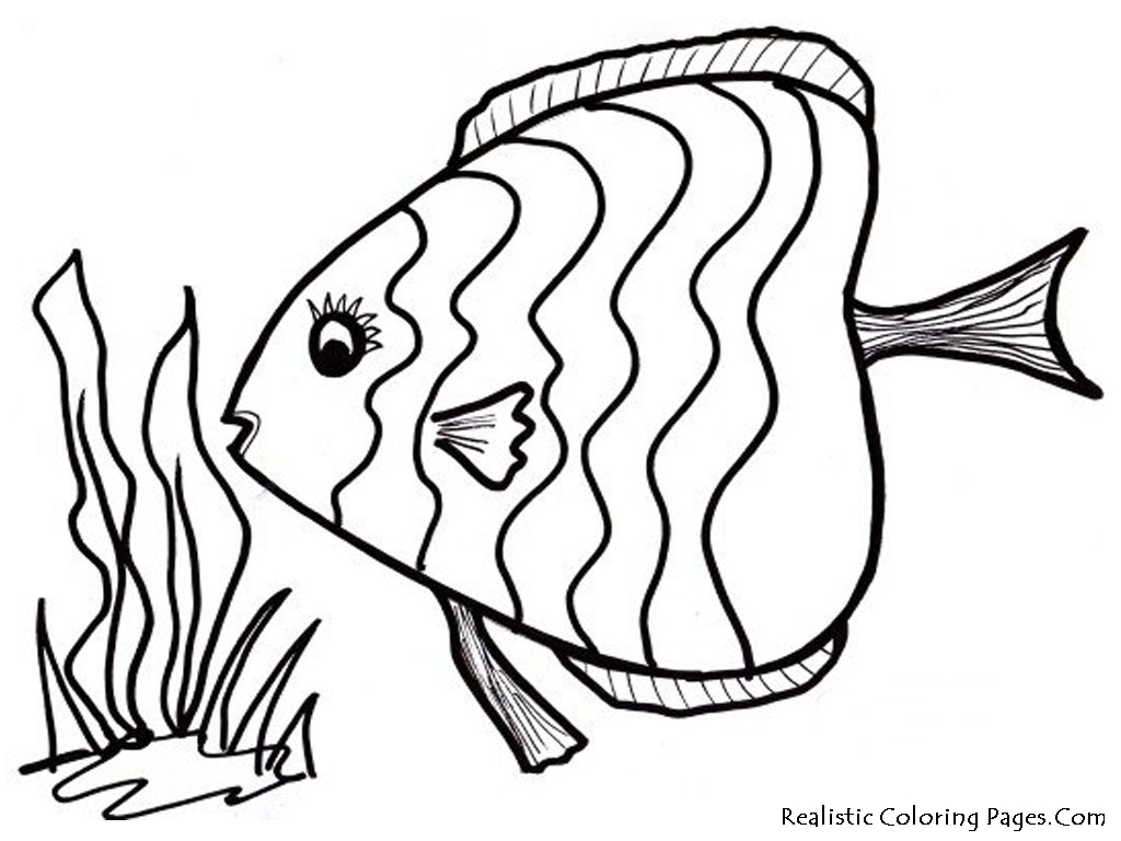 Tropical Fish Coloring Pages 01