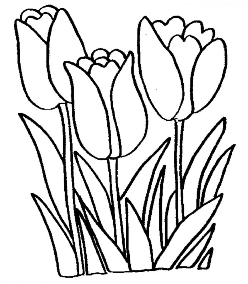 Tulip Coloring Page 01