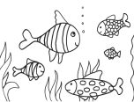 Grade 1 Coloring Pages