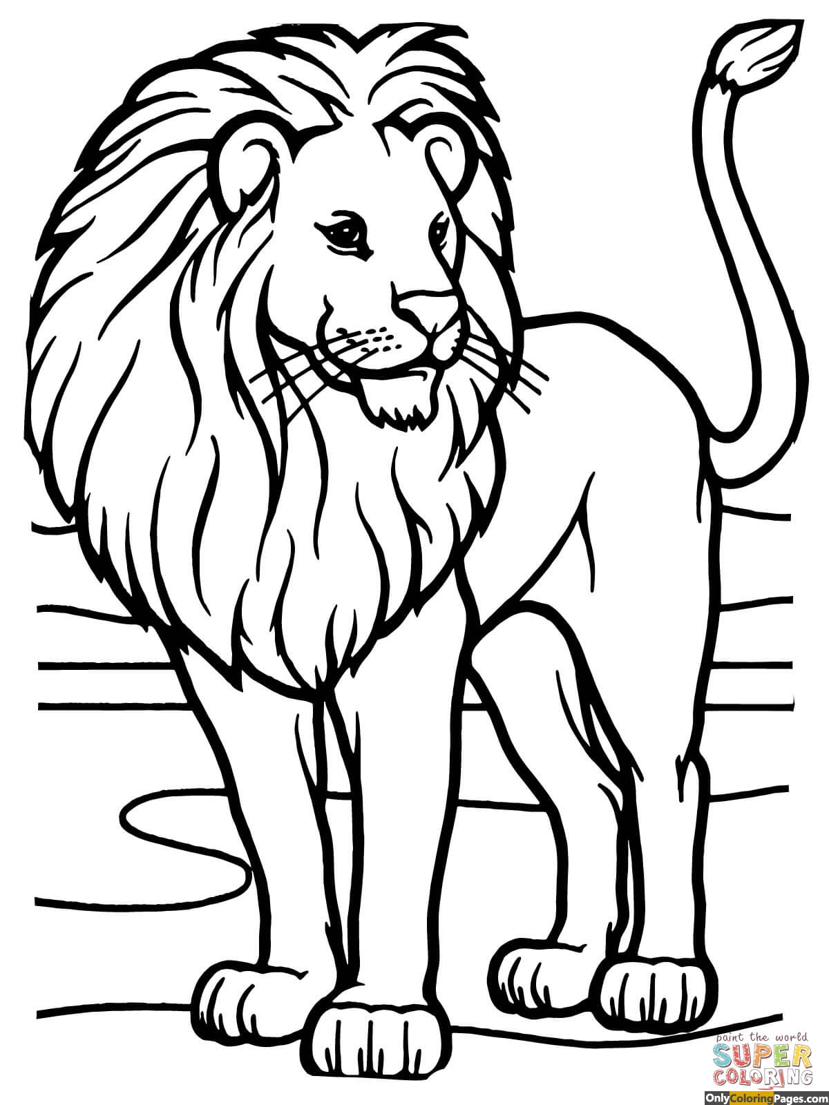 Lion Coloring Pages African Lion 01
