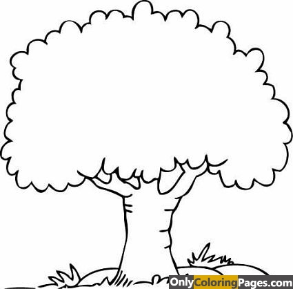 Tree_Coloring_Pages_01