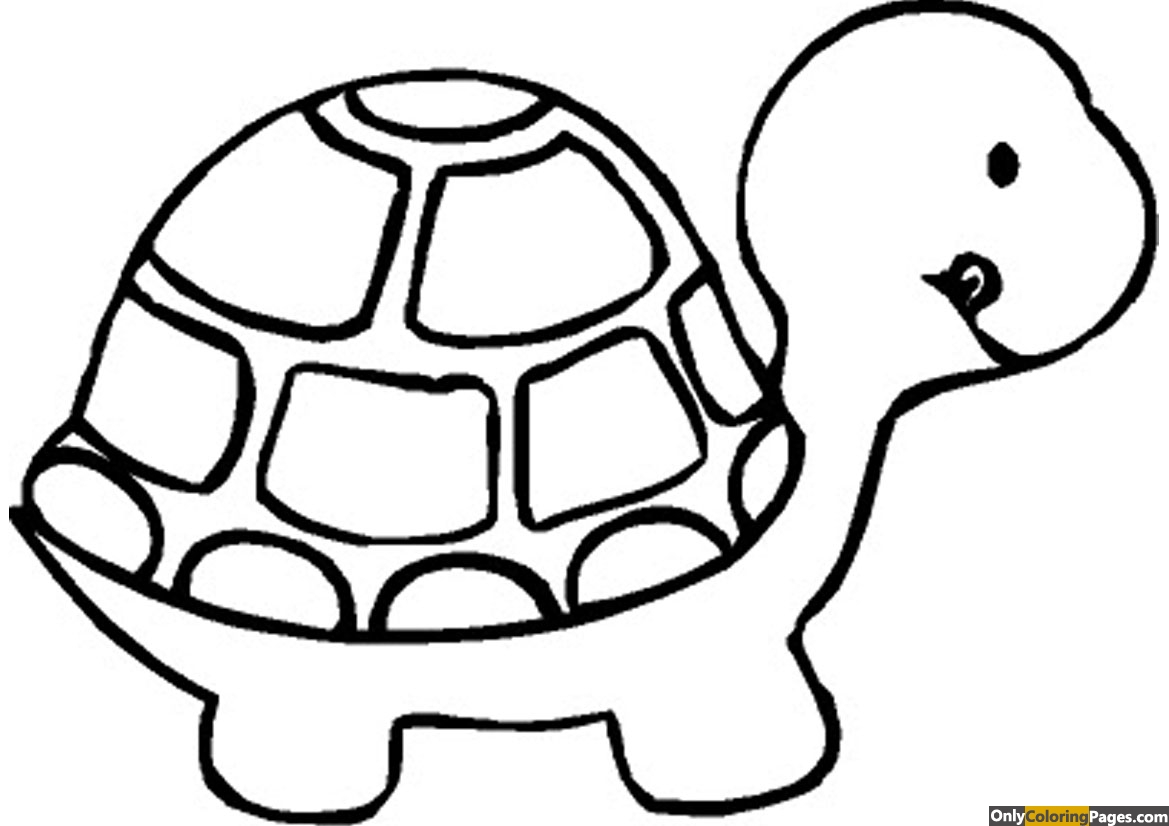 Turtle Coloring Pages 01