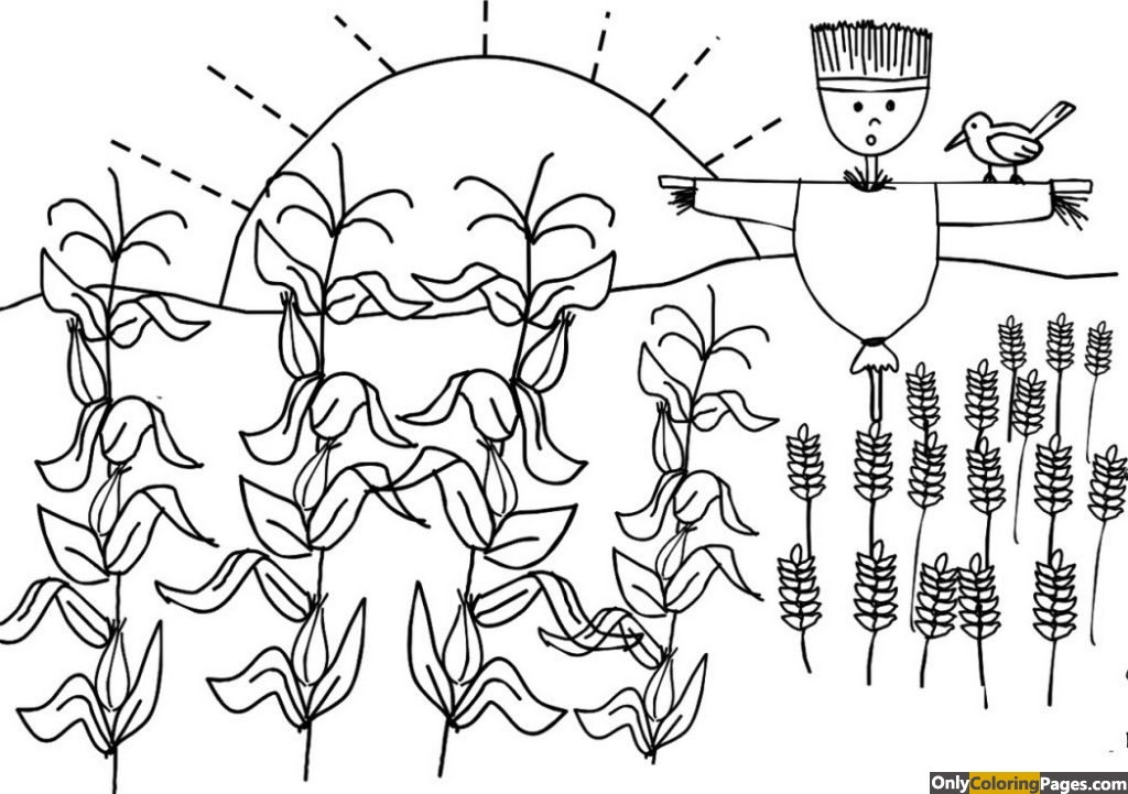crops-coloring-pages