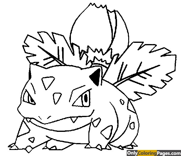 pokemon coloring pages ivysaur