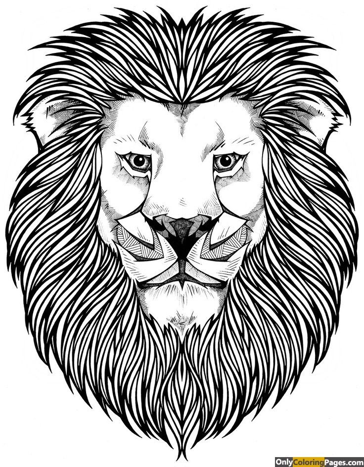 page, lion, hard, face, coloring, adults