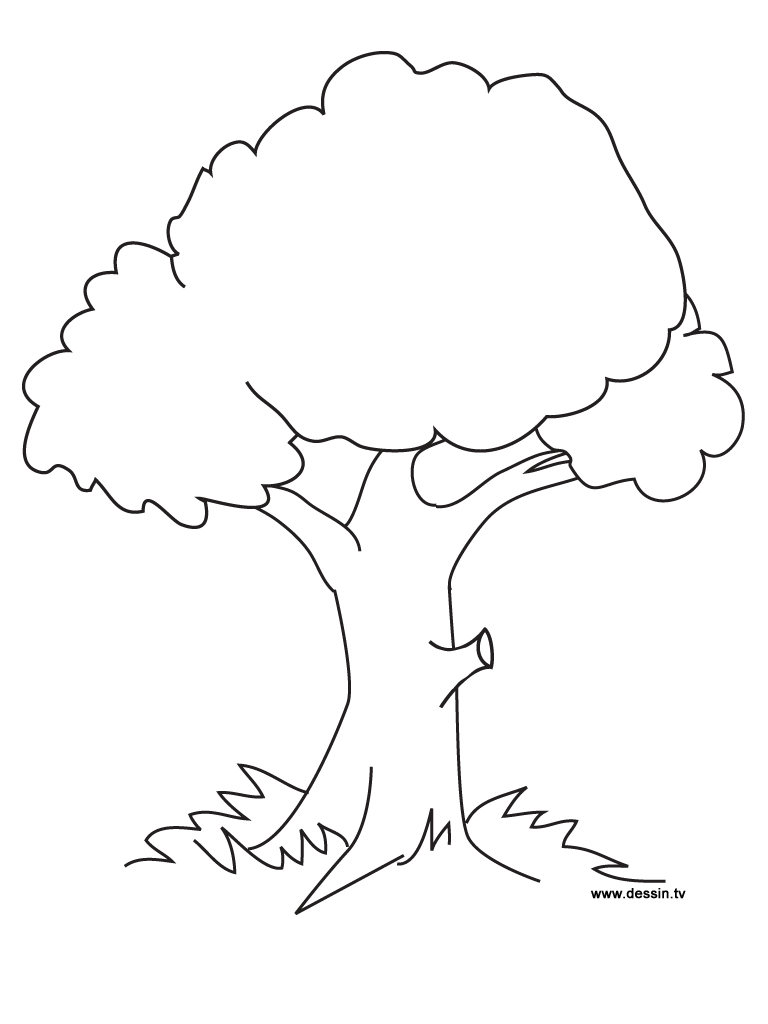 Tree-Coloring-Pages-01