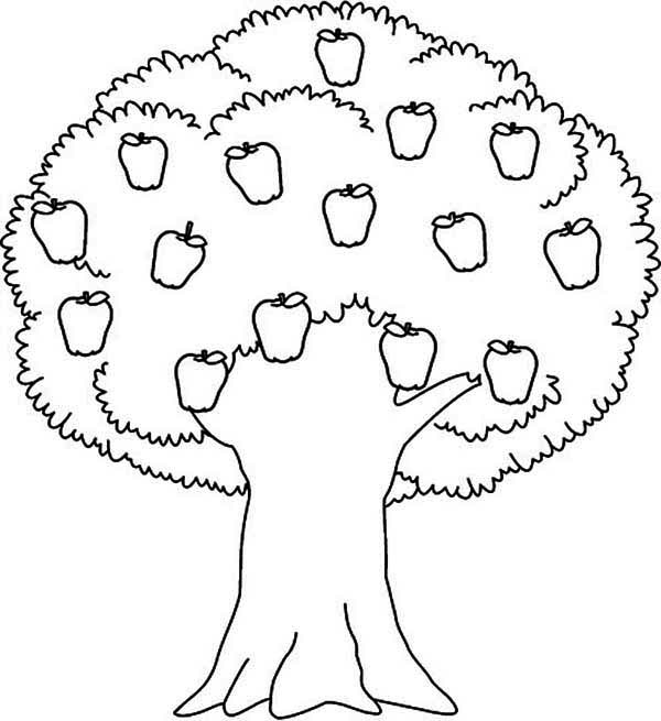 Tree Coloring Pages 04