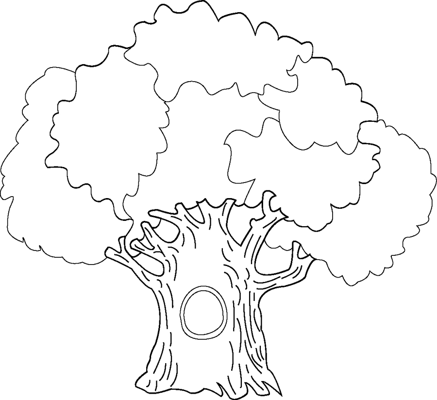 Tree Coloring Pages 20
